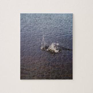 Ondulaciones en un lago, de un salto de los puzzle con fotos