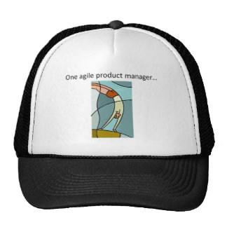 One Agile Product Manager... Trucker Hat
