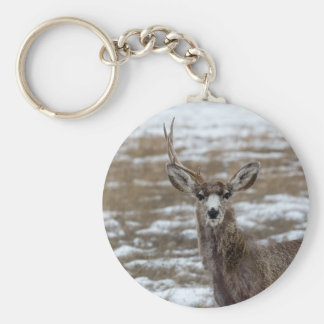 One Antlered Deer Keychain