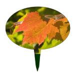 One Autumn Leaf Cake Picks