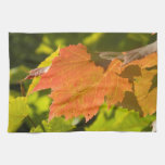 One Autumn Leaf Hand Towel