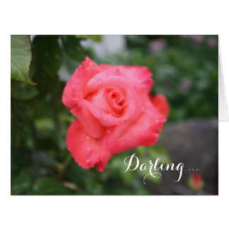 One Beautiful Pink Rose, Big Greeting Card