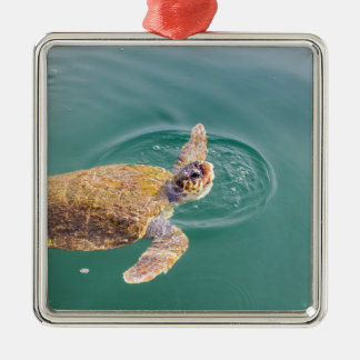One big swimming sea turtle Caretta Metal Ornament