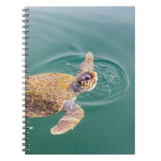 One big swimming sea turtle Caretta Notebook