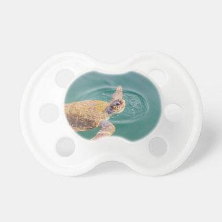 One big swimming sea turtle Caretta Pacifier