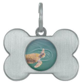 One big swimming sea turtle Caretta Pet Tag