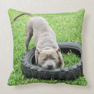 One_Bite_Or_Two_Staffy_Large_Lounge_Throw_Cushion, Throw Pillow