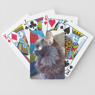 One Black Cat Playing Cards