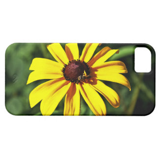 One Bright Yellow Black-Eyed Susan Flower with Bee iPhone SE/5/5s Case