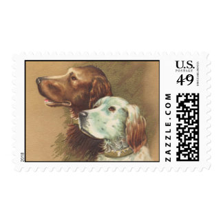 One Brown and One White Dog Postage