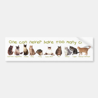 One can NEVER have too many cats. Car Bumper Sticker