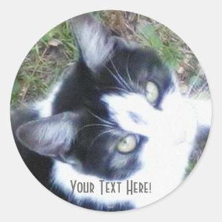 One Cool Cat (Boy) Classic Round Sticker