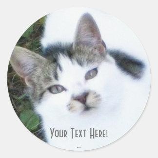 One Cool Cat (Girl) Classic Round Sticker