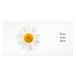 One daisy flower card