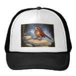 One Day At A Time: Carolina Wren in Oil Pastel Mesh Hat