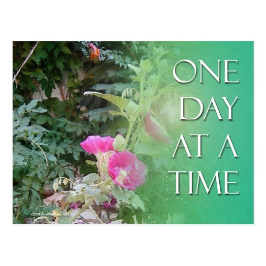 One Day at a Time Hollyhocks Postcard