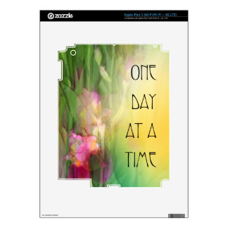 One Day at a Time Pink and Red Irises iPad 3 Skins