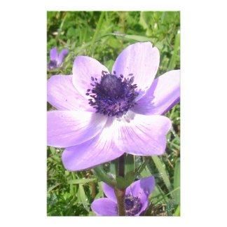 One Delicate Pale Lilac Anemone Coronaria Stationery