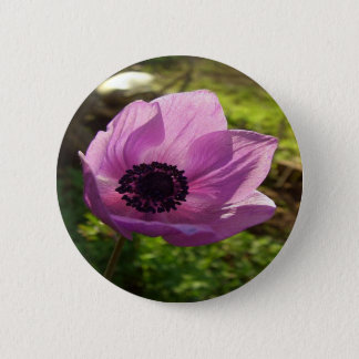 One Delicate Purple Anemone Coronaria Flower Button