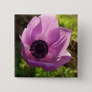 One Delicate Purple Anemone Coronaria Flower Pinback Button