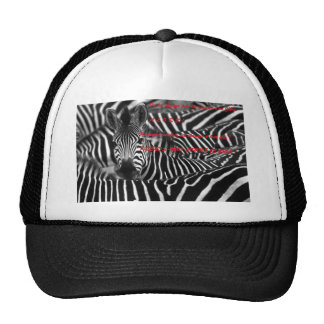 ONE DOES NOT CHANGE the STRIPES D ZEBRE.png Trucker Hat