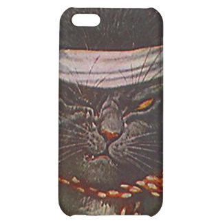 One-eyed winking Pirate Cat vintage style Iphone 4 Case For iPhone 5C