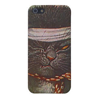 One-eyed winking Pirate Cat vintage style Iphone 4 Covers For iPhone 5