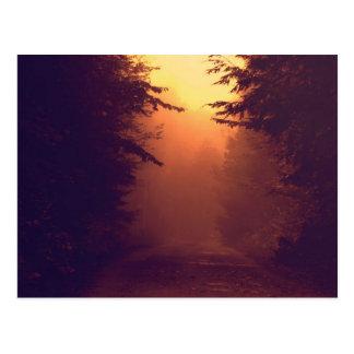 One Foggy Morning Postcard