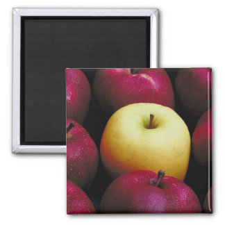 One Green Apple 2 Inch Square Magnet