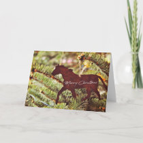 ONE HORSE OPEN SLEIGH 5x7 Greeting Card