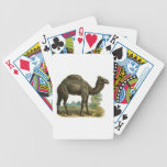 One Hump Camel Playing Cards