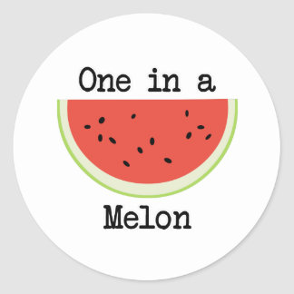One in a Melon Classic Round Sticker