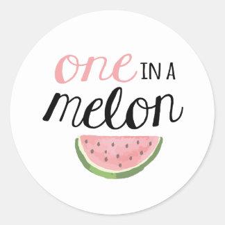 One in a Melon, First Birthday Sticker