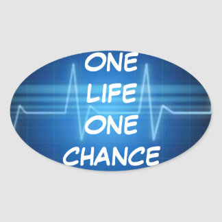 One Life One Chance Sticker