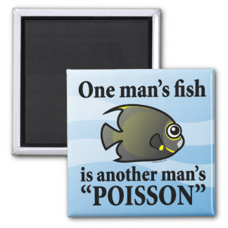 One Man's Fish, Another Man's Poisson Magnet