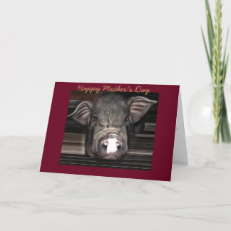 One Of A Kind pig, Mother's Day Card