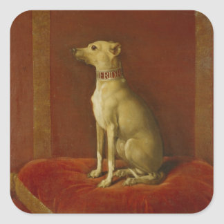One of Frederick II's Italian greyhounds Square Sticker
