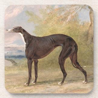 One of George Lane Fox's Winning Greyhounds: the B Beverage Coaster
