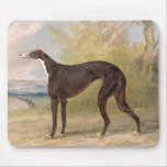 One of George Lane Fox's Winning Greyhounds: the B Mouse Pad