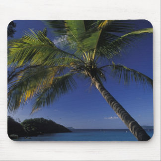 One of the World's Best beaches; Trunk Bay on Mouse Pad