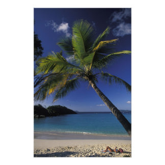 One of the World's Best beaches; Trunk Bay on Photo Print