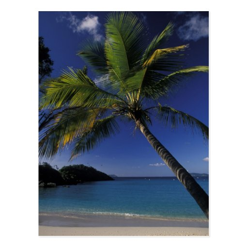 One of the World's Best beaches; Trunk Bay on Post Card