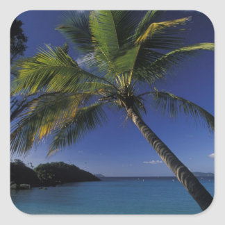 One of the World's Best beaches; Trunk Bay on Square Sticker