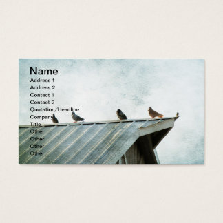 One of Them Does Not Belong, 4 Pigeons & 1 Sparrow Business Card