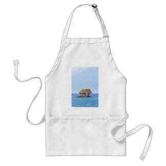 One outstanding rock rising from sea level adult apron