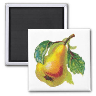 One Pear Magnet