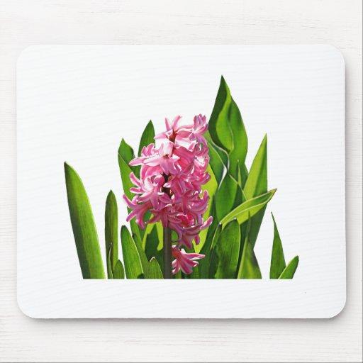 One Pink Hyacinth Mouse Mats