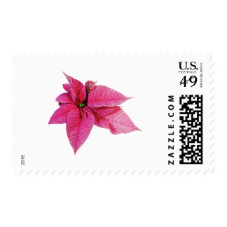 One Pink Poinsettia Stamps
