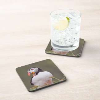 One Puffin Drink Coaster