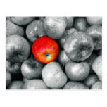 One Red Apple Postcard